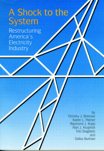 A Shock to the System Restructuring America's Electricity Industry book cover