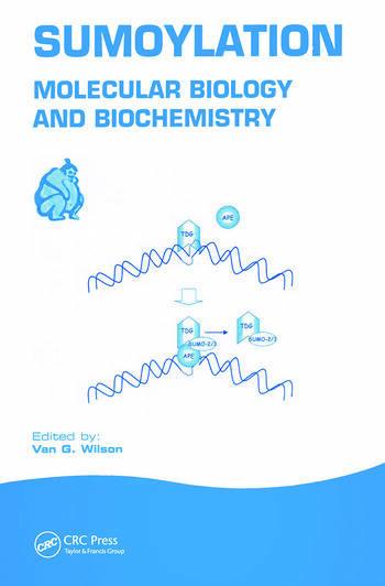 Sumoylation Molecular Biology and Biochemistry book cover