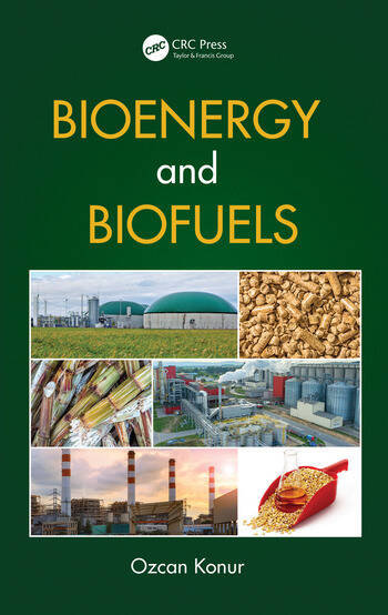 Bioenergy and Biofuels book cover