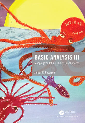 Basic Analysis III Mappings on Infinite Dimensional Spaces book cover