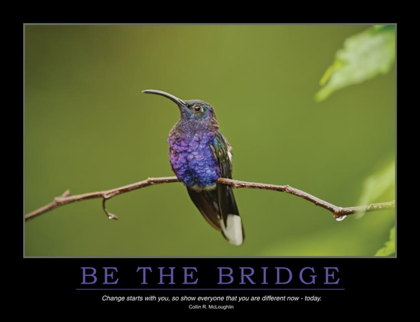 Be the Bridge Poster book cover