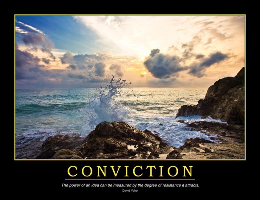 Conviction Poster book cover