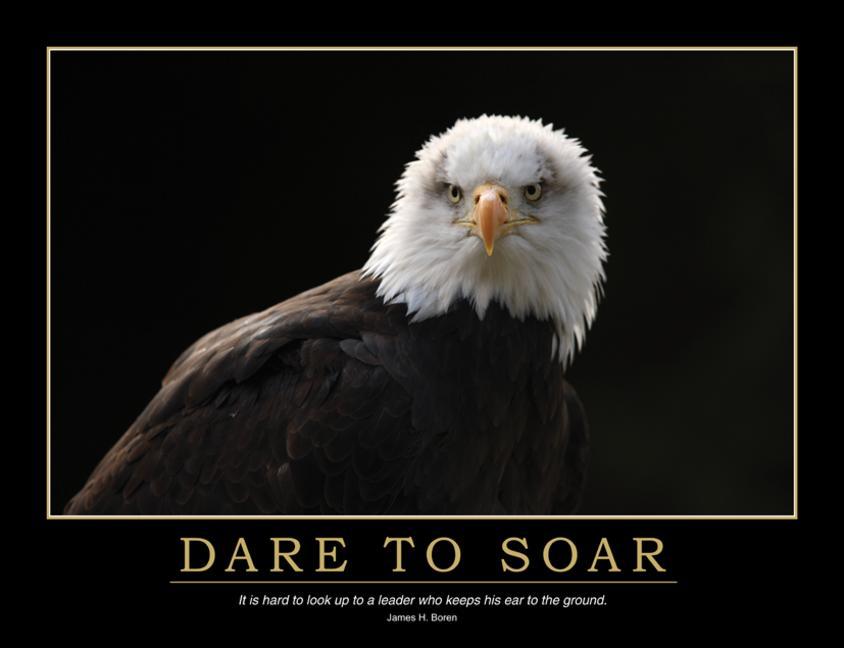 Dare to Soar Poster book cover