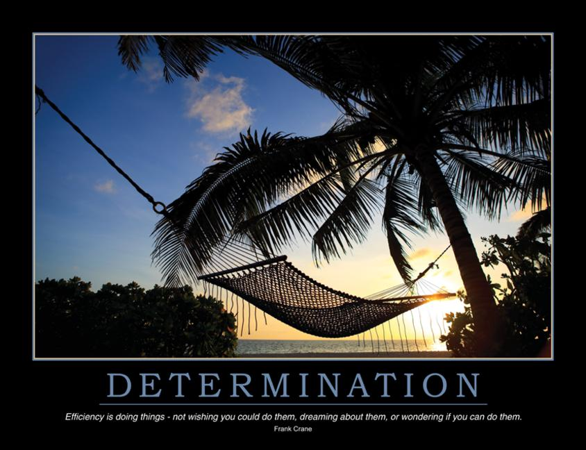 Determination Poster book cover