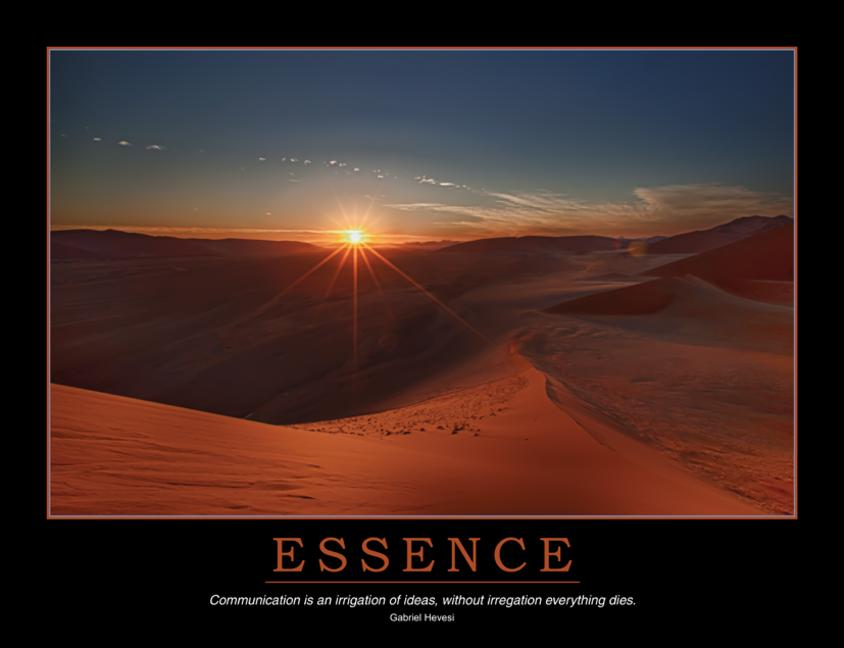 Essence Poster book cover