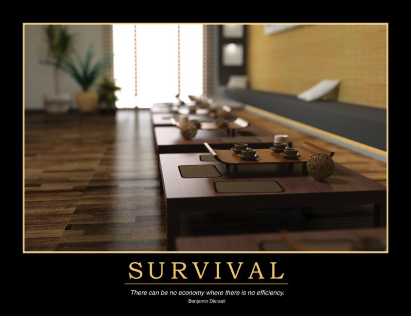 Survival Poster book cover