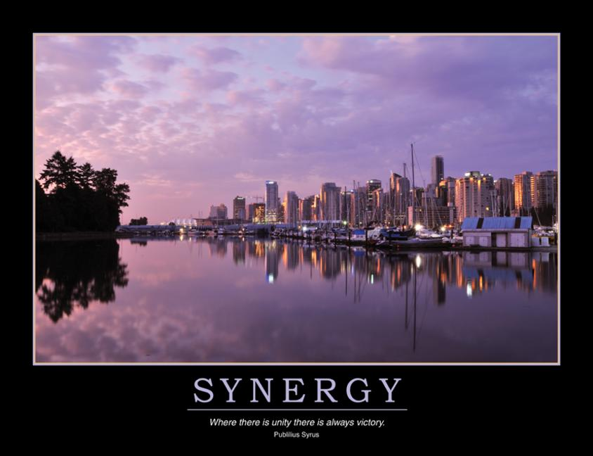 Synergy Poster book cover