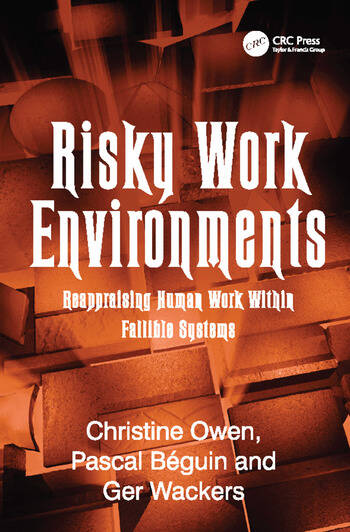 Risky Work Environments Reappraising Human Work Within Fallible Systems book cover