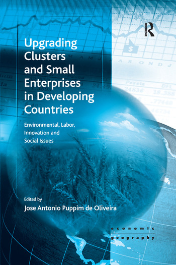 Upgrading Clusters and Small Enterprises in Developing Countries Environmental, Labor, Innovation and Social Issues book cover