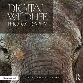Digital Wildlife Photography book cover