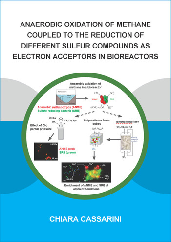 Anaerobic Oxidation of Methane Coupled to the Reduction of Different Sulfur Compounds as Electron Acceptors in Bioreactors book cover