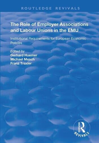 The Role of Employer Associations and Labour Unions in the EMU Institutional Requirements for European Economic Policies book cover