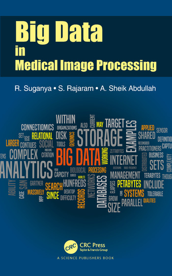 Big Data in Medical Image Processing book cover