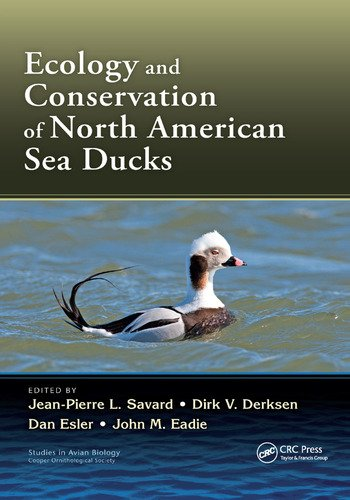 Ecology and Conservation of North American Sea Ducks book cover