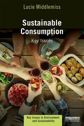 Sustainable Consumption Key Issues book cover