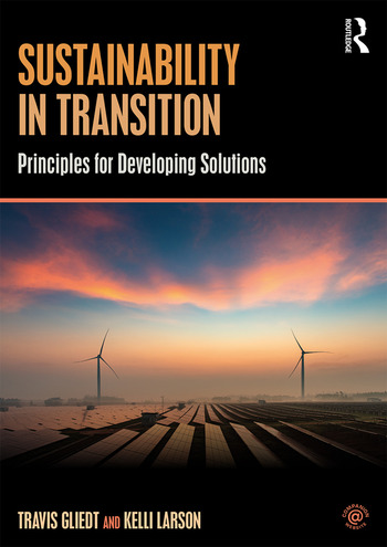 Sustainability in Transition Principles for Developing Solutions book cover