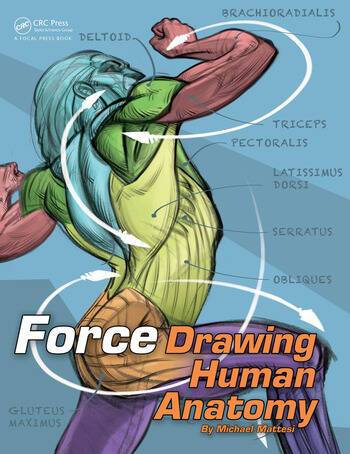 FORCE: Drawing Human Anatomy book cover