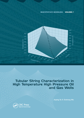 Tubular String Characterization in High Temperature High Pressure Oil and Gas Wells book cover