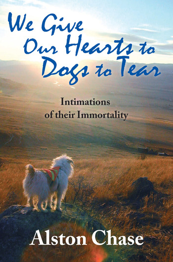 We Give Our Hearts to Dogs to Tear Intimations of Their Immortality book cover