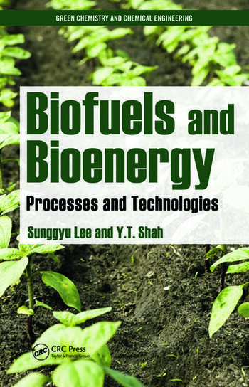 Biofuels and Bioenergy Processes and Technologies book cover
