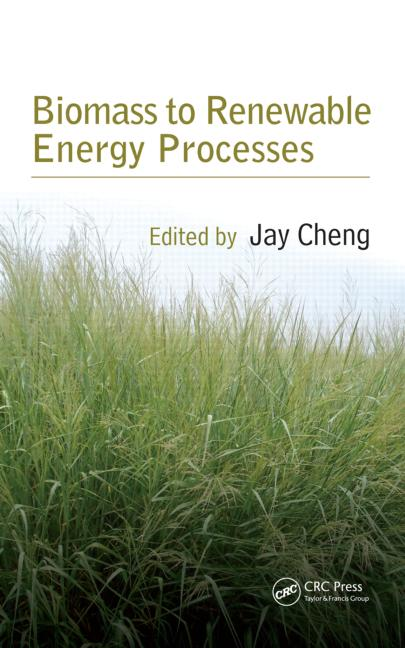 Biomass to Renewable Energy Processes book cover
