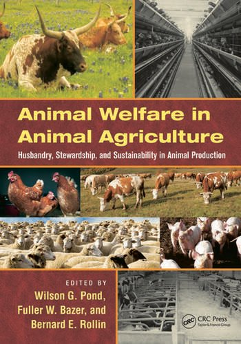 Animal Welfare in Animal Agriculture Husbandry, Stewardship, and Sustainability in Animal Production book cover