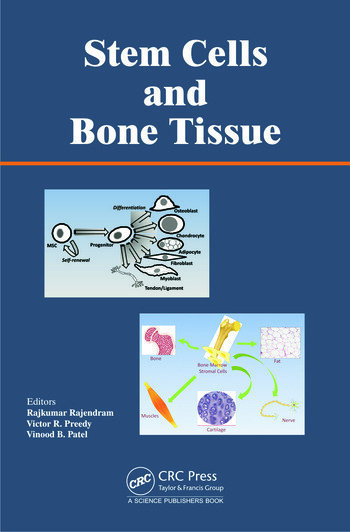 Stem Cells and Bone Tissue book cover