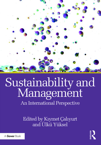Sustainability and Management An International Perspective book cover