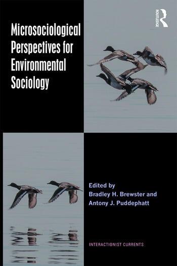 Microsociological Perspectives for Environmental Sociology book cover