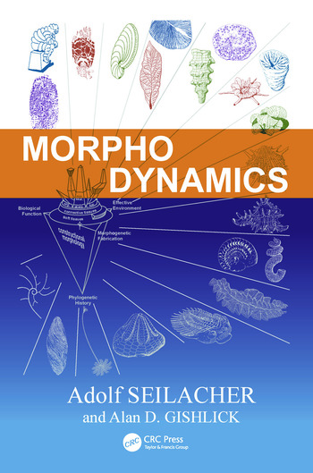 Morphodynamics book cover