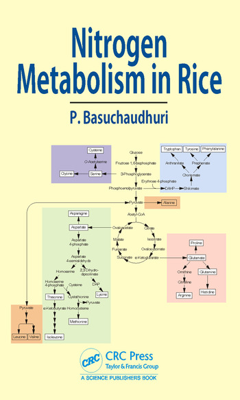 Nitrogen Metabolism in Rice book cover