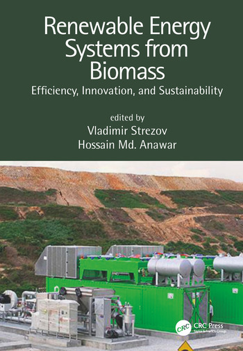 Renewable Energy Systems from Biomass Efficiency, Innovation and Sustainability book cover