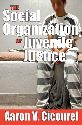 The Social Organization of Juvenile Justice book cover