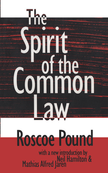 The Spirit of the Common Law book cover
