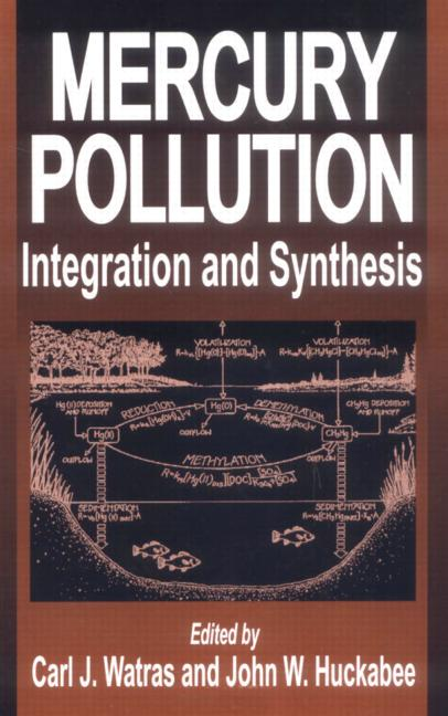 Mercury Pollution Integration and Synthesis book cover