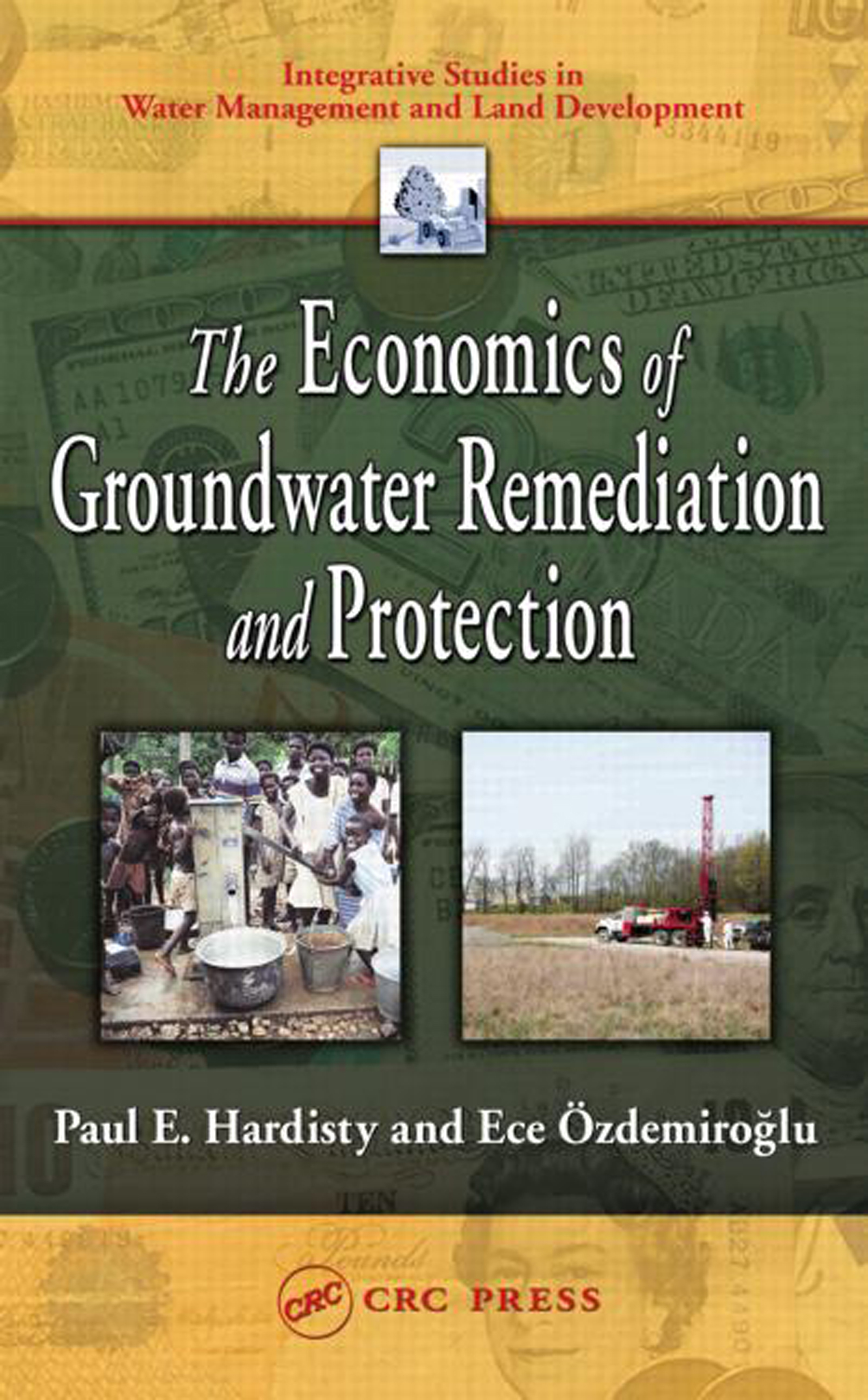 The Economics of Groundwater Remediation and Protection book cover