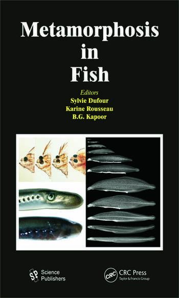 Metamorphosis in Fish book cover