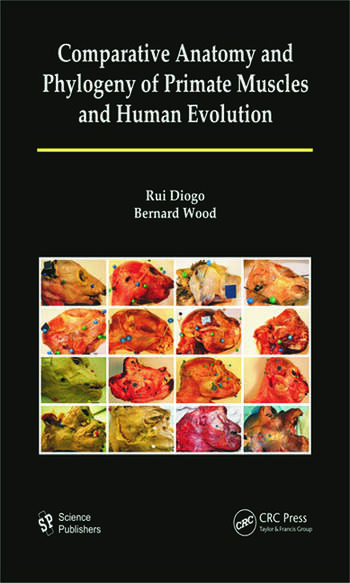 Comparative Anatomy and Phylogeny of Primate Muscles and Human Evolution book cover