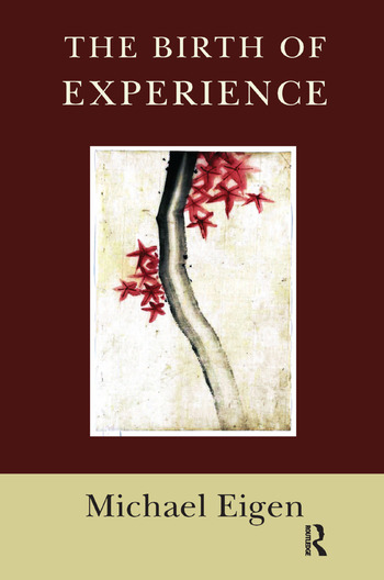 The Birth of Experience book cover