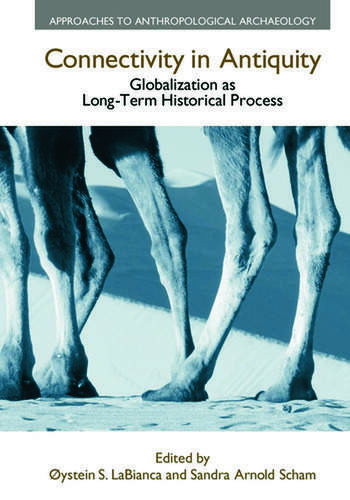 Connectivity in Antiquity Globalization as a Long-Term Historical Process book cover