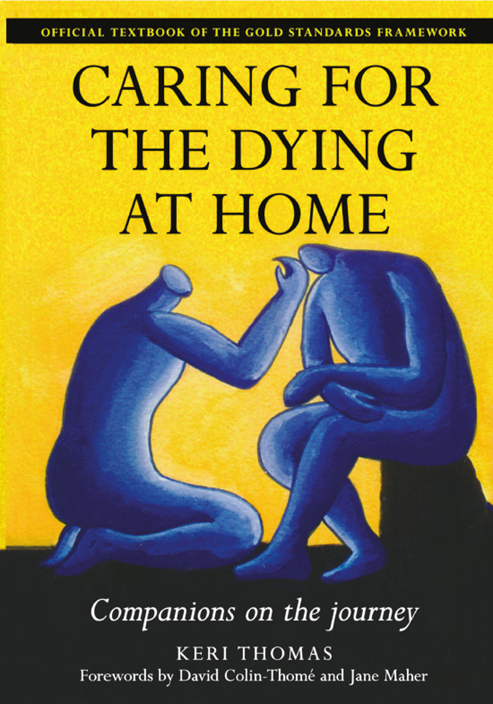 Caring for the Dying at Home Companions on the Journey book cover