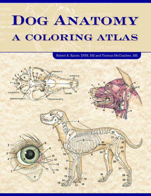 Dog Anatomy A Coloring Atlas book cover
