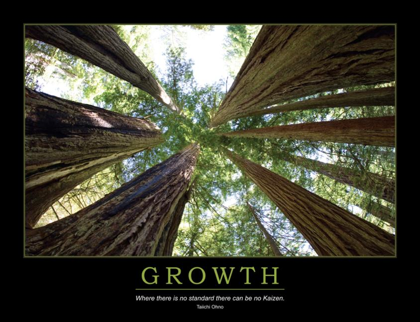 Growth Poster book cover