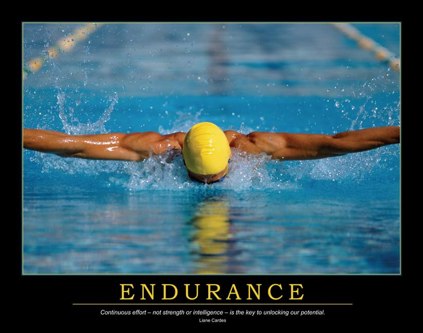 Endurance Poster book cover