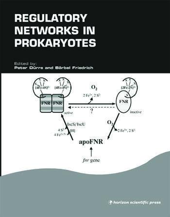 Regulatory Networks in Prokaryotes book cover