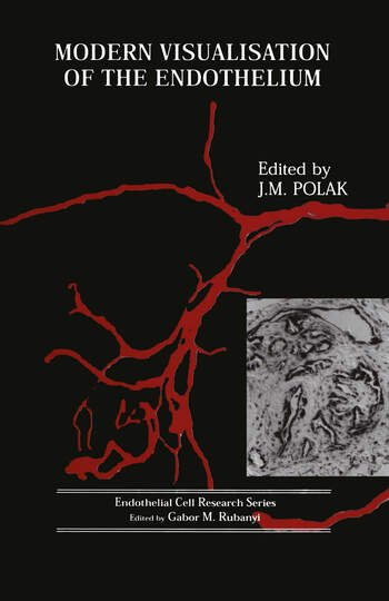 Modern Visualisation of the Endothelium book cover