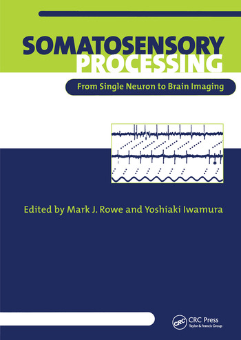 Somatosensory Processing From Single Neuron to Brain Imaging book cover