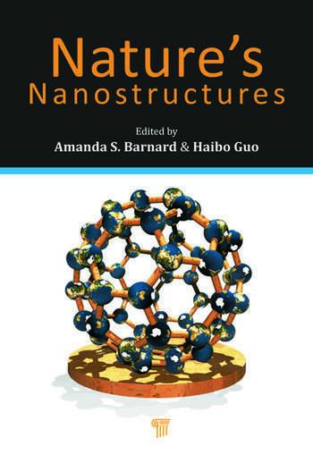 Nature's Nanostructures book cover