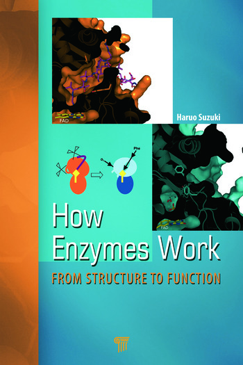 How Enzymes Work From Structure to Function book cover