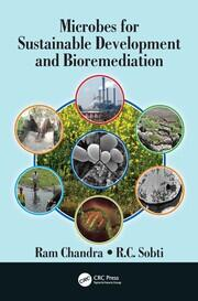 Field-Scale Remediation of Crude Oil–Contaminated Desert Soil Using Various Treatment Technologies
